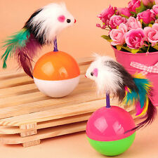 Funny Kids Cute Pet Cat Kitten Training Play Toy Mice Mouse Tumbler Ball Hot