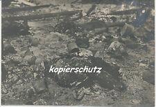 Foto Frankreich-Aisne Front 1917 toter Russe 1.WK (1214)