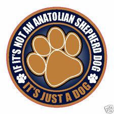 "Not An Anatolian Shepherd Dog Just A Dog 5"" Sticker"