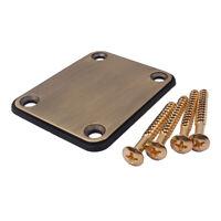 Bass Halsplatte Neck Plate E-Gitarre Schrauben für ST SQ