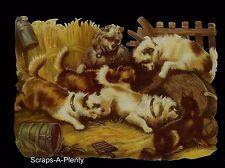 German Embossed Scrap Die Cut - Large Playful Puppies / Dogs  NICE   BK5043