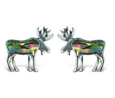Moose Fashionable Earrings - Stud - Abalone Paua Shell