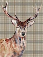 Stag watercolour print on canvas by Jane Bannon