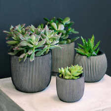 Alexia Indoor Planters in Black by Capi, 4-pack