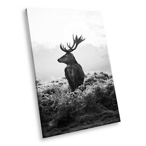 A571 Black White Animal Portrait Canvas Picture Print Large Wall Art Stag Sunset