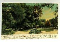 Wellsville New York Island Park Undivided Back Vintage Postcard