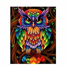 Beautiful Owl Painting By Numbers Acrylic Canvas Pictures Wall Art Garden Decors