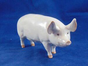 BESWICK PIG CHAMPION WALL QUEEN 40 #1452 GLOSS