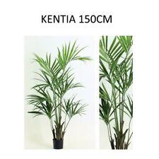 KENTIA  Kenzia  150 CM Artificiale PIANTE Artificiali Finte