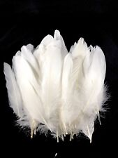 6-8 inch 50pcs White Goose Bulk Craft Feathers