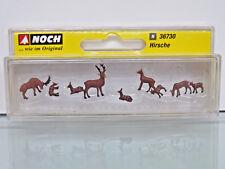 Noch 36730 Deers 1 160 Spur N
