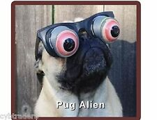 Funny Pug  Dog  Alien  Refrigerator / Tool Box  Magnet