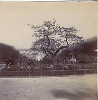 Palais Royal Parigi Foto Amateur Vintage Citrato Ca 1900