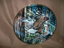 Franklin Mint Ronald Van Ruyckevelt Eagle Plate Freedom'S Flight