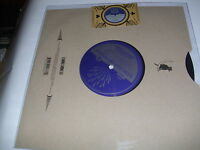 """Steve Earle // Robert Johnson - Terraplane Blues - 10"""" Vinyl //// Neu"""