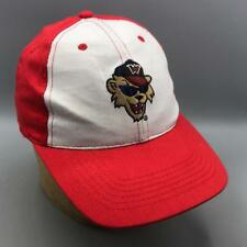 Washington Wild Things Independent Minor League Baseball Hat Cap