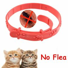 Cat Kitten Adjustable  Remedy Pet Collar Neck Strap Anti Flea Mite Acari Tick