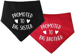 Spoilt Rotten Pets Promoted To Big Brother Or Sister Dog Bandana Reveal Pregnant