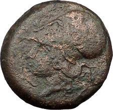 Syracuse in Sicily 344BC Timoleon Ancient Greek Coin Hippocamp Sea horse i31547