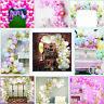 Macaron Balloon Arch Kit Set Birthday Wedding Baby Shower Party Garland Decor