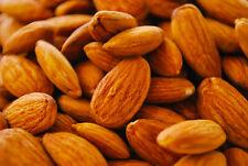 Mandorle Sgusciate dolci SICILIANE 20 KG Produzione 2020 coltivate naturalmente
