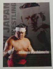 Shinya Hashimoto 2000 Future Bee Collecara Card #2 All New Japan Pro Wrestling
