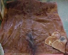 Rare Horse Hide fur blanket wool 1800's Equestrian Wow!