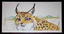 IBERIAN LYNX   Spanish Lynx  Superb Illustrated 1970's Colour Card  VGC
