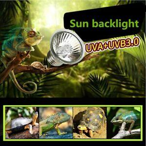 lucertole 10.0 Lampadine a luce ultravioletta UVB 10.0//5.0 da 13 W per tartarughe rettili