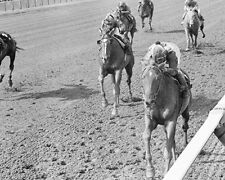 CHATEAUGAY 1963 BELMONT STAKES WINNER 8X10 PHOTO BRAULIO BAEZA UP