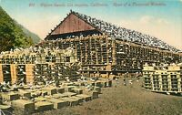 DB Ca Postcard I115 Pigeon Ranch Los Angeles Birds Road of a Thousand Wonders