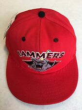RETRO PROLINE JAMESTOWN JAMMERS DETROIT TIGERS MINOR LEAGUE FLAT BRIM FITTED HAT
