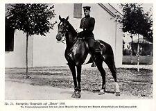 """Prince héritier rupprecht (de Bavière) sur """"AMOR"""" 1889 * document illustré de 1915"""