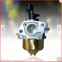 Homelite,hlm140sp,hpw2400,hlm140hp,essence,tondeuse,carburateur,outil jardin