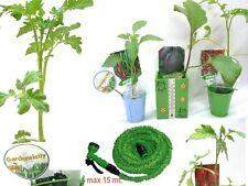 GardenSicily kit Piantine Ortaggi già cresciuti per Balconi e Angoli Verdi + acc