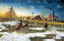 "Harvest Roosters Farm Pheasant Print  by Jim Hansel  18"" x 10.5"""