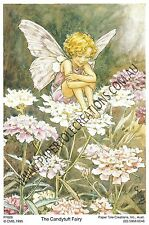 Paper tole Kit - Candytuft Fairy
