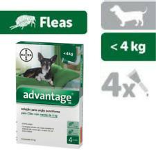 ADVANTAGE 40 / 100 / 250 / 400 - Chiens - 4 Pipettes Anti Puces Fleas treatment