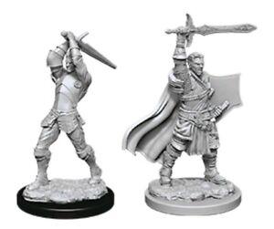 Dungeons & Dragons - Nolzurs Marvelous Unpainted Minis: Male Human Paladin-WZ...
