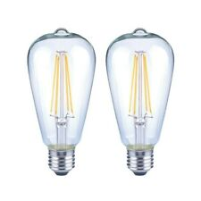 EcoSmart 75W Equiv Daylight ST19 Clear Filament Light Bulb (2 Pack) 464