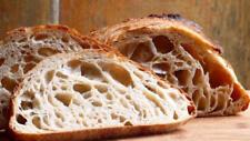@ sourdough starter beast culture yeast flour dough dry powder mix for mixer