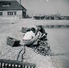 COURSEULLES c. 1950 - Parc aux Huîtres Calvados Normandie - DIV1305