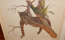 """RICHARD YOUNGER """"YEARLING YOUNG BOBCAT"""" HAND SIGNED LITHOGRAPH"""