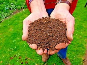 POTTING COMPOST FOR INDOOR PLANTS 🎍 HOUSE PLANT, CHILLI, FLOWER SOIL BLOCKS ✔