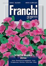 Semi/Seeds VINCA Nana Rosa