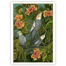 © ART - Cockatiels quarrions love Original wildlife Bird Artist Print by Di