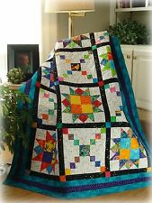 PLAYFUL PATHWAYS Quilt Pattern easy beginner baby crib full twin queen New #435