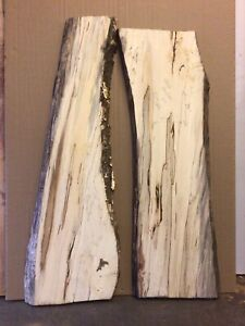 Spalted Hornbeam Kiln Dried Timber Wood Resin Table Planks Craft Waney Edge #5