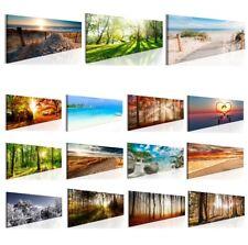 Große Deko-Bilder fürs Wohnzimmer günstig kaufen | eBay