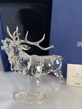 Swarovski Crystal Stag With Rhodium Antlers